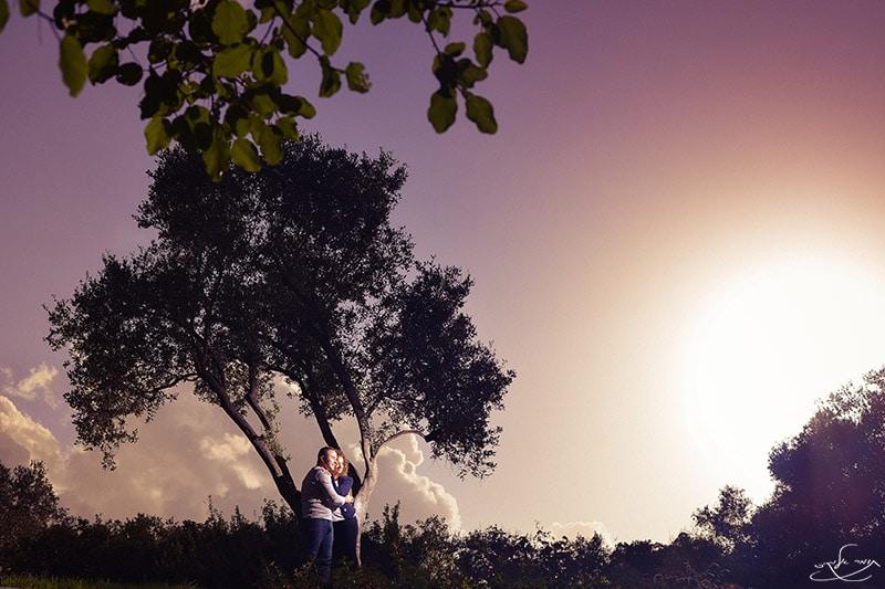 צילום עם פלאש חיצוני שמוסתר בין ענפי העץ